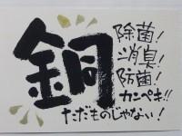 【売り切れ】超抗菌ポケット付きマスク銅布フィルターセット