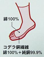 5本指靴下構成-(1)